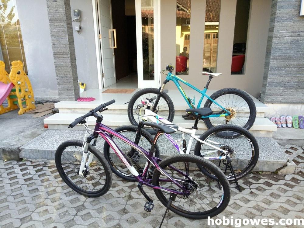 Sepeda Polygon Women