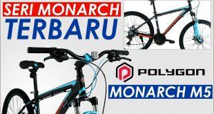 Polygon Monarch