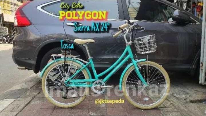 Polygon Sierra AX